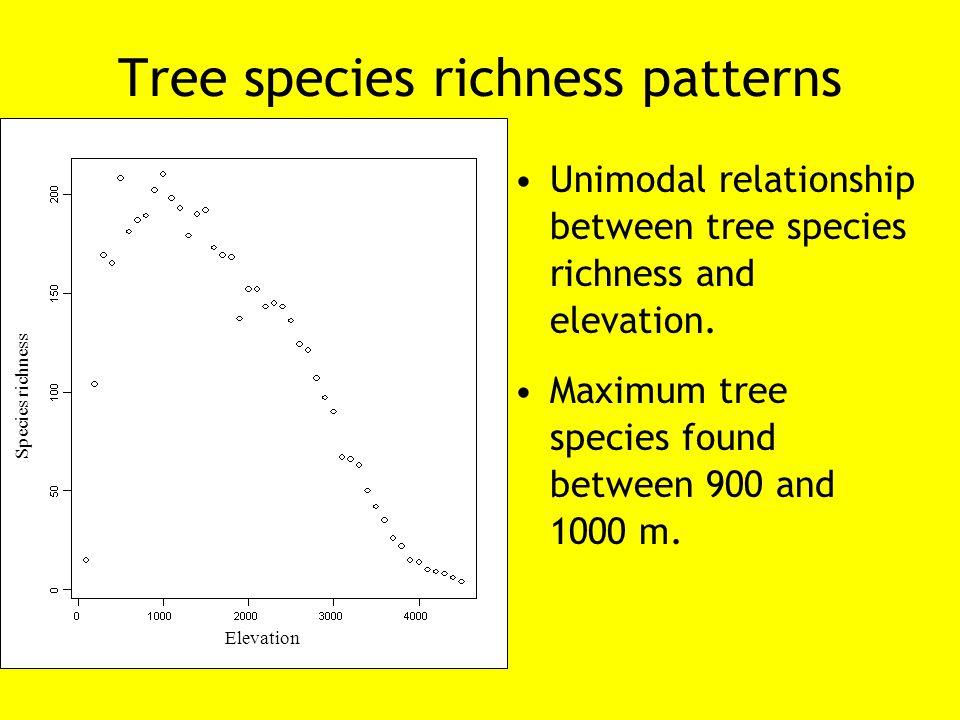 Tree species richness patterns Unimodal relationship between tree species richness and elevation. Maximum tree species found between 900 and 1000 m. E