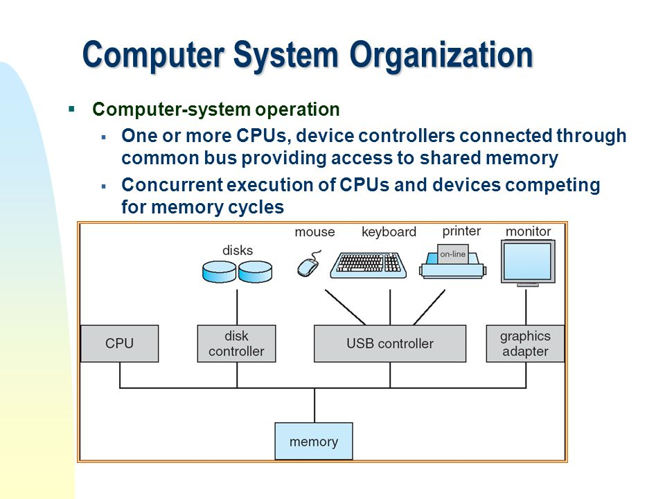Computer System Organisation Operating System Hardware CPU Bus Device Controllers Memory Storage Structure Main Memory Secondary Storage