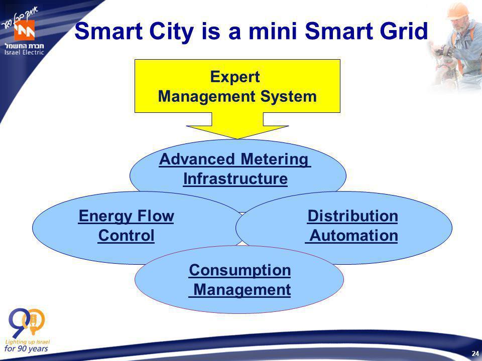 24 Smart City is a mini Smart Grid Expert Management System Consumption Management Advanced Metering Infrastructure Distribution Automation Energy Flo