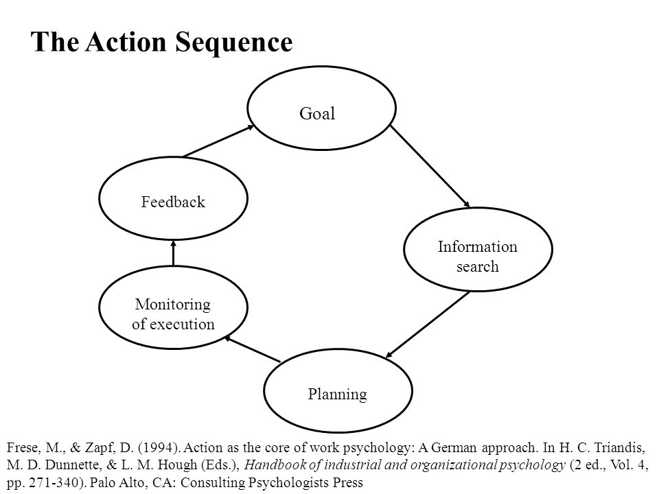 The Action Sequence Goal Information search Planning Monitoring of execution Feedback Frese, M., & Zapf, D.