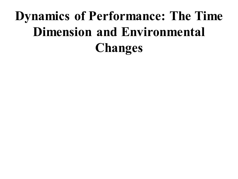Dynamics of Performance: The Time Dimension and Environmental Changes
