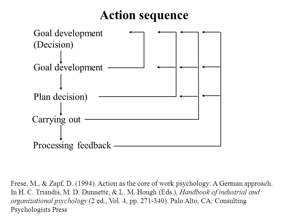 Action sequence Frese, M., & Zapf, D. (1994).