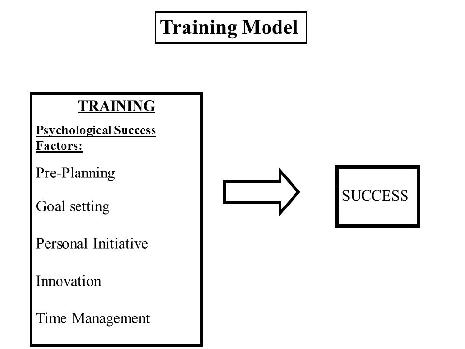 TRAINING Psychological Success Factors: Pre-Planning Goal setting Personal Initiative Innovation Time Management SUCCESS Training Model
