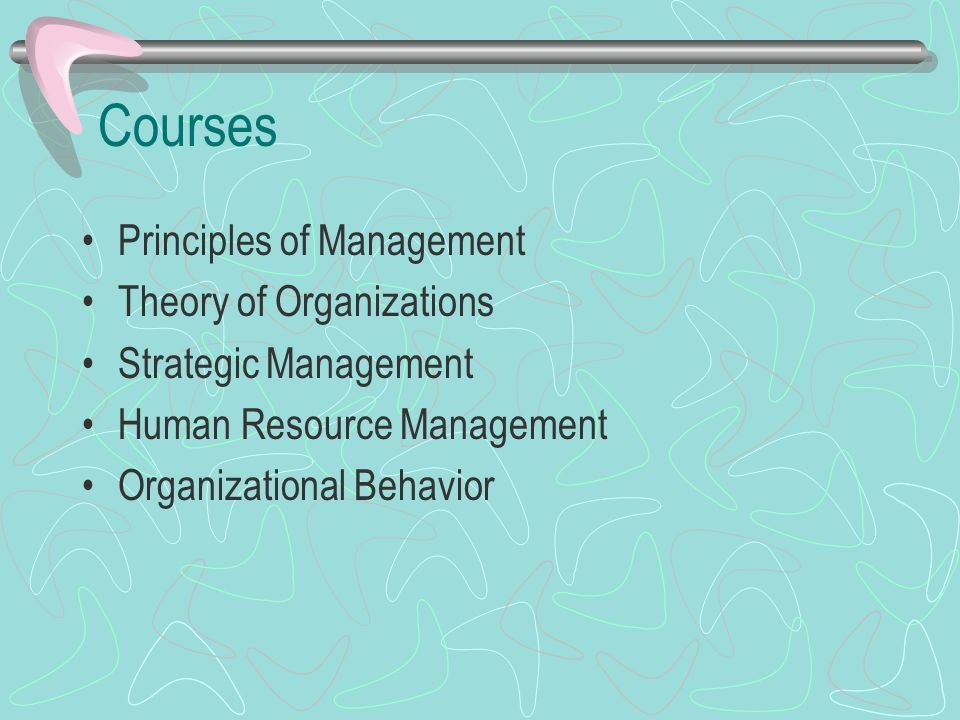 Courses Principles of Management Theory of Organizations Strategic Management Human Resource Management Organizational Behavior