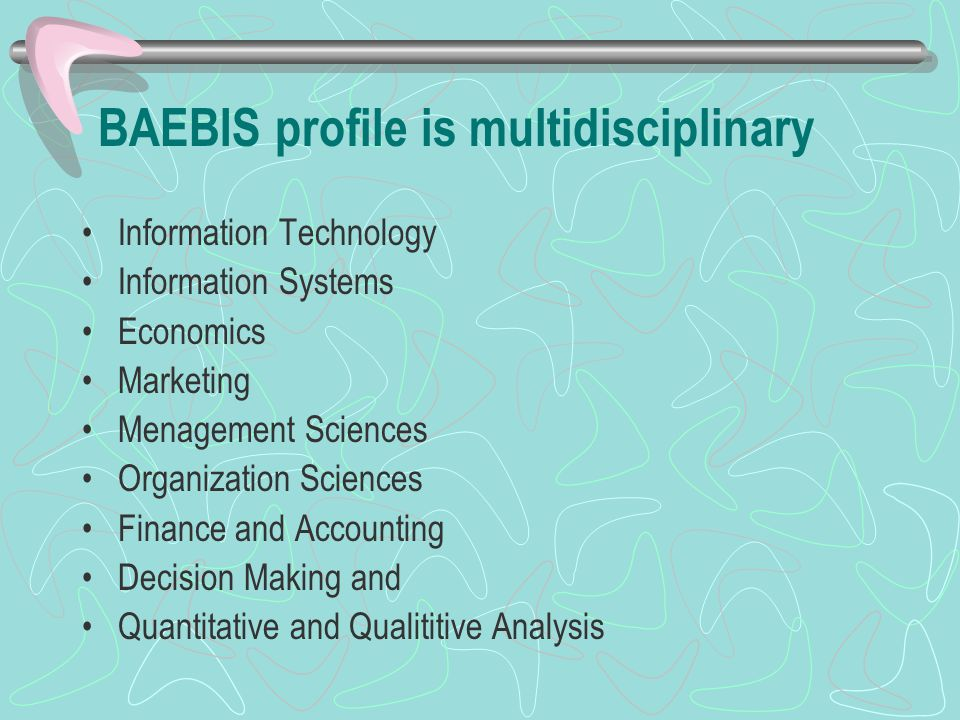 BAEBIS profile is multidisciplinary Information Technology Information Systems Economics Marketing Menagement Sciences Organization Sciences Finance and Accounting Decision Making and Quantitative and Qualititive Analysis