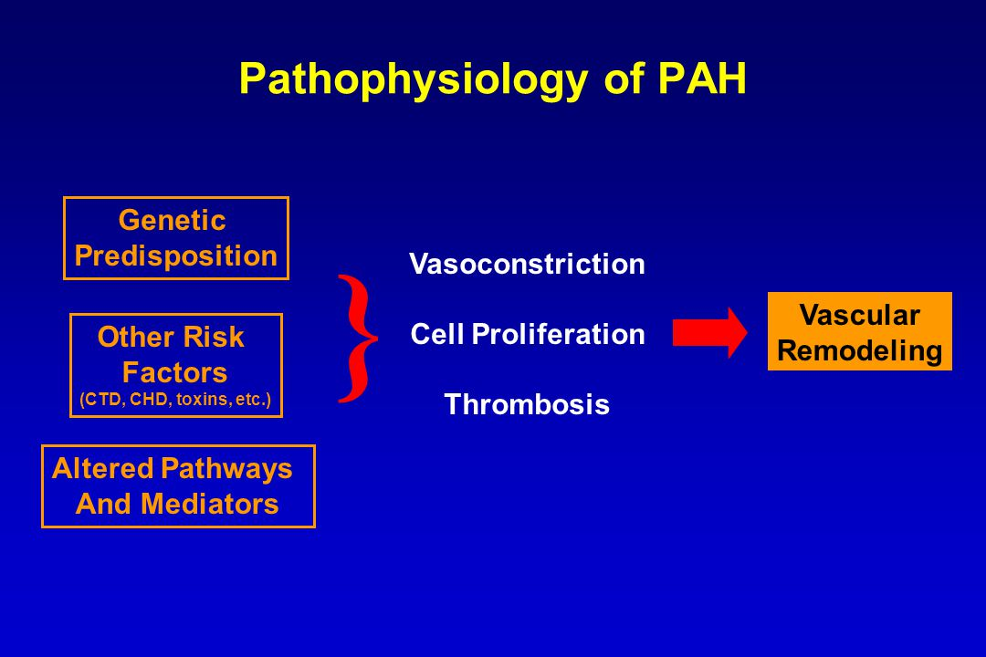 Combination Therapy for PAH To target multiple disease pathways –Endothelin pathway (endothelin receptor antagonists) –Nitric oxide pathway (PDE-5 inhibitors) –Prostacyclin pathway (prostacyclin analogs) Used clinically with little evidence to date Used when therapy needs to be augmented because patient response to monotherapy is inadequate Must consider the drug interaction potential of agents to be combined (risk-benefit analysis) –Drug interaction between bosentan and sildenafil –Drug interaction between bosentan and tadalafil Barst, et al.