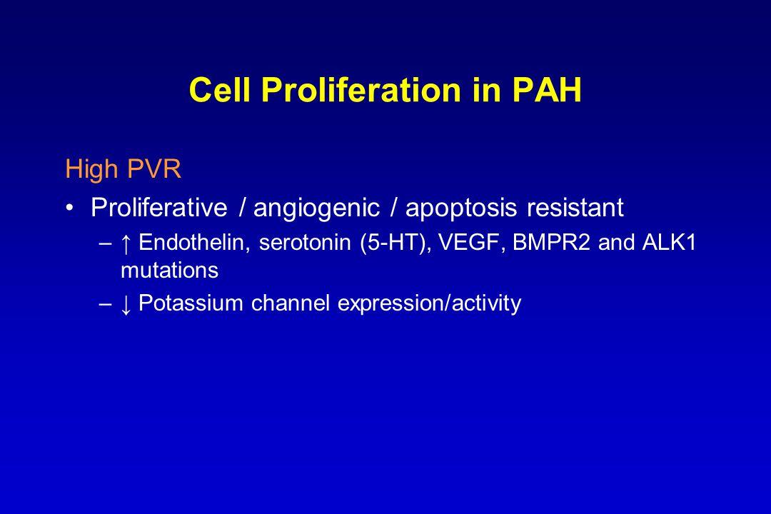 Cell Proliferation in PAH High PVR Proliferative / angiogenic / apoptosis resistant –↑ Endothelin, serotonin (5-HT), VEGF, BMPR2 and ALK1 mutations –↓