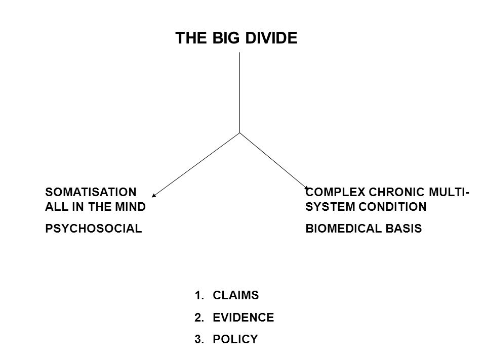 THE BIG DIVIDE SOMATISATION ALL IN THE MIND PSYCHOSOCIAL COMPLEX CHRONIC MULTI- SYSTEM CONDITION BIOMEDICAL BASIS 1.CLAIMS 2.EVIDENCE 3.POLICY