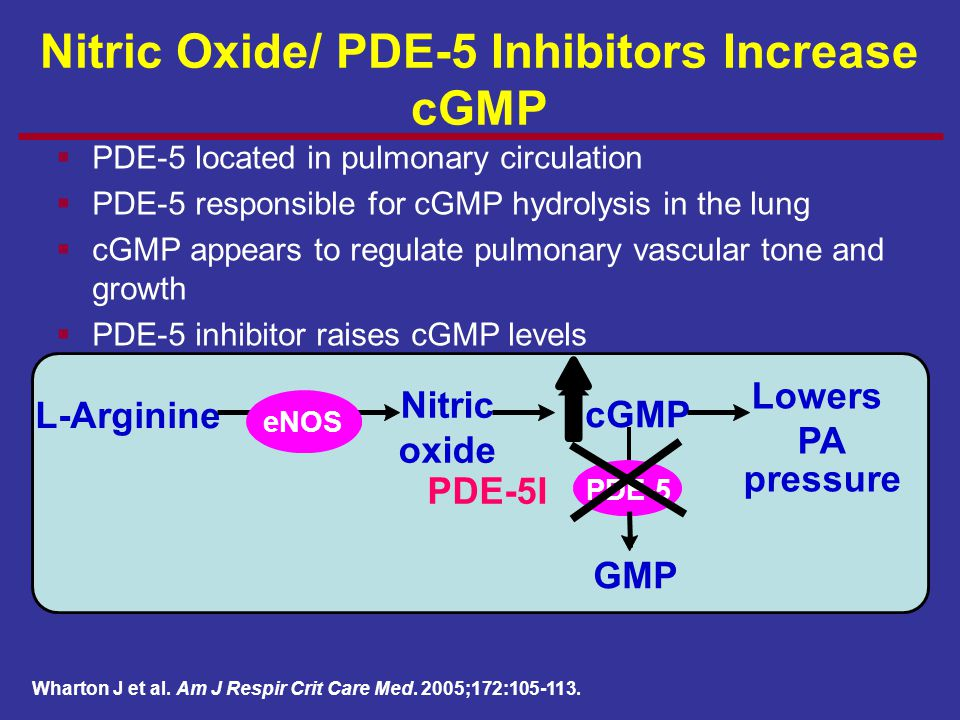 L-Arginine Nitric oxide cGMP Lowers PA pressure eNOS GMP PDE-5 PDE-5I  PDE-5 located in pulmonary circulation  PDE-5 responsible for cGMP hydrolysis