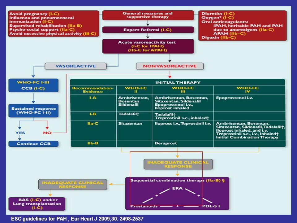 ESC guidelines for PAH, Eur Heart J 2009;30: 2498-2537