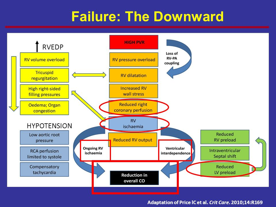 PH and RV Failure: The Downward Spiral Adaptation of Price lC et al. Crit Care. 2010;14:R169 HYPOTENSION RVEDP