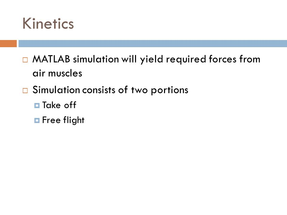 Kinetics  MATLAB simulation will yield required forces from air muscles  Simulation consists of two portions  Take off  Free flight