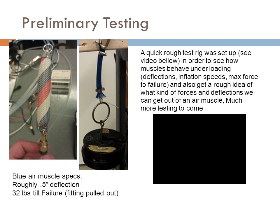 A quick rough test rig was set up (see video bellow) In order to see how muscles behave under loading (deflections, Inflation speeds, max force to failure) and also get a rough idea of what kind of forces and deflections we can get out of an air muscle, Much more testing to come Blue air muscle specs: Roughly.5 deflection 32 lbs till Failure (fitting pulled out) Preliminary Testing