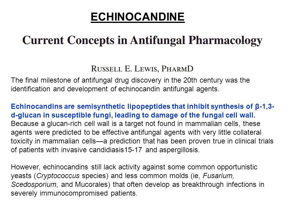 The final milestone of antifungal drug discovery in the 20th century was the identification and development of echinocandin antifungal agents. Echinoc