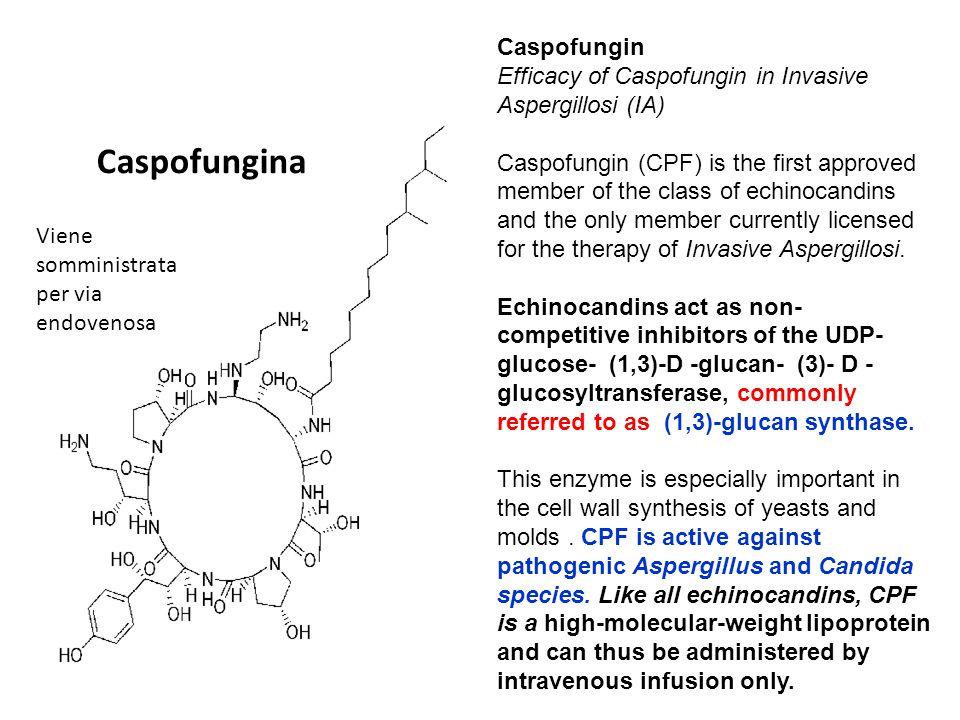 Caspofungina Viene somministrata per via endovenosa Caspofungin Efficacy of Caspofungin in Invasive Aspergillosi (IA) Caspofungin (CPF) is the first a