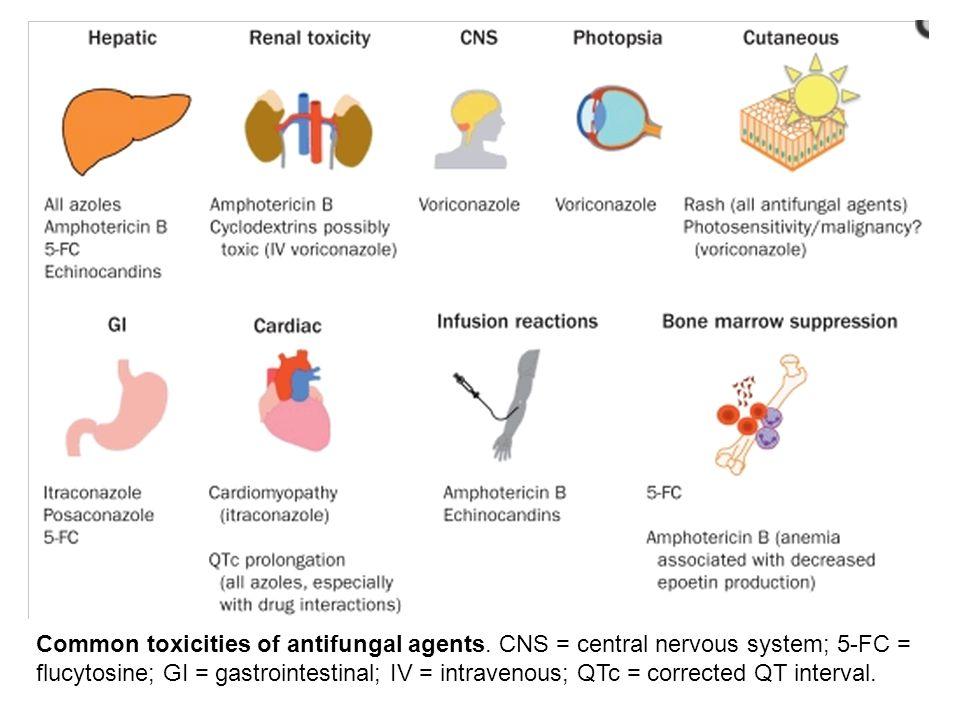 Common toxicities of antifungal agents. CNS = central nervous system; 5-FC = flucytosine; GI = gastrointestinal; IV = intravenous; QTc = corrected QT