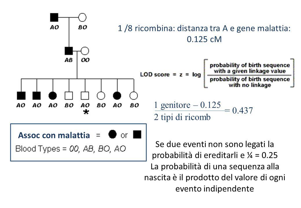 Assoc con malattia 1 /8 ricombina: distanza tra A e gene malattia: 0.125 cM 1 genitore – 0.125 2 tipi di ricomb = 0.437 Se due eventi non sono legati la probabilità di ereditarli e ¼ = 0.25 La probabilità di una sequenza alla nascita è il prodotto del valore di ogni evento indipendente