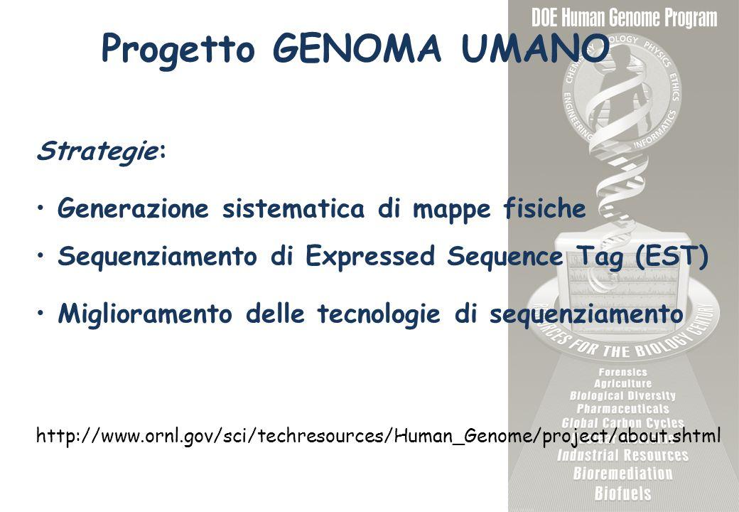 Progetto GENOMA UMANO Strategie: Generazione sistematica di mappe fisiche Sequenziamento di Expressed Sequence Tag (EST) Miglioramento delle tecnologie di sequenziamento http://www.ornl.gov/sci/techresources/Human_Genome/project/about.shtml
