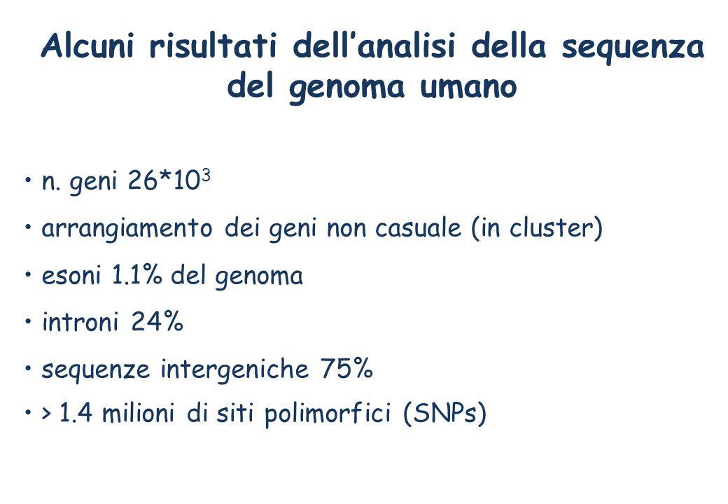 Alcuni risultati dell'analisi della sequenza del genoma umano n.