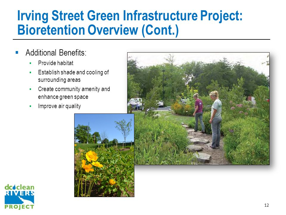 Irving Street Green Infrastructure Project: Bioretention Overview (Cont.)  Additional Benefits:  Provide habitat  Establish shade and cooling of surrounding areas  Create community amenity and enhance green space  Improve air quality 12