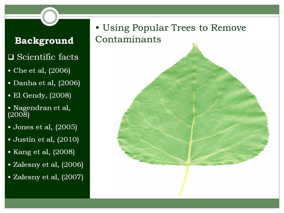 Background Using Popular Trees to Remove Contaminants  Scientific facts Che et al, (2006) Danha et al, (2006) El Gendy, (2008) Nagendran et al, (2008) Jones et al, (2005) Justin et al, (2010) Kang et al, (2008) Zalesny et al, (2006) Zalesny et al, (2007)