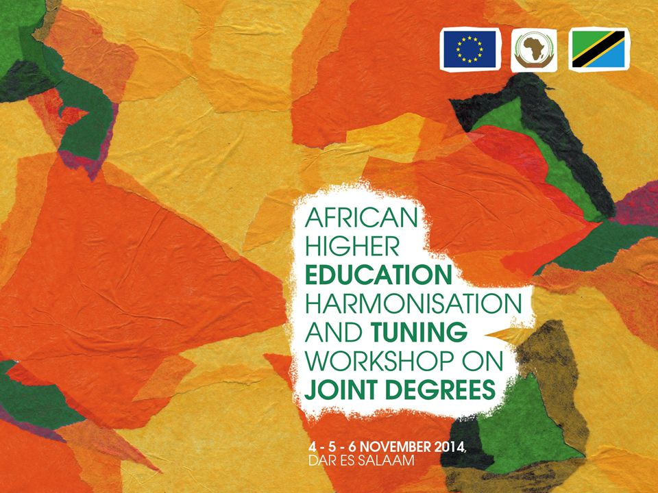 Discussion and preparation of ideas for Tuning Africa II (2015 – 2017) Julia González and Pablo Beneitone University of Deusto