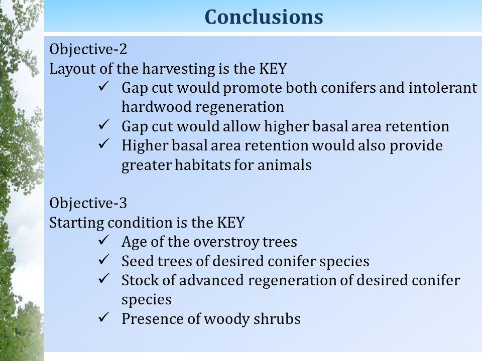 Conclusions Objective-2 Layout of the harvesting is the KEY Gap cut would promote both conifers and intolerant hardwood regeneration Gap cut would allow higher basal area retention Higher basal area retention would also provide greater habitats for animals Objective-3 Starting condition is the KEY Age of the overstroy trees Seed trees of desired conifer species Stock of advanced regeneration of desired conifer species Presence of woody shrubs