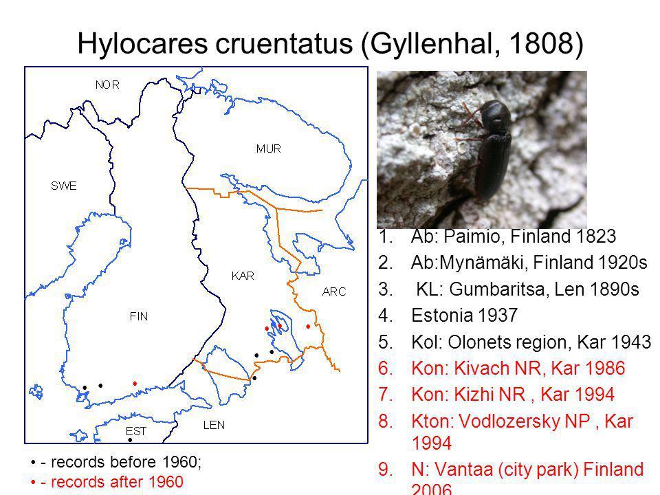 Hylocares cruentatus (Gyllenhal, 1808) 1.Ab: Paimio, Finland 1823 2.Ab:Mynämäki, Finland 1920s 3.