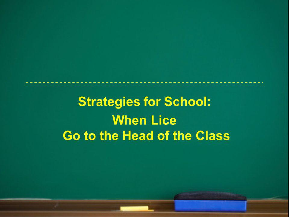 Strategies for School: When Lice Go to the Head of the Class