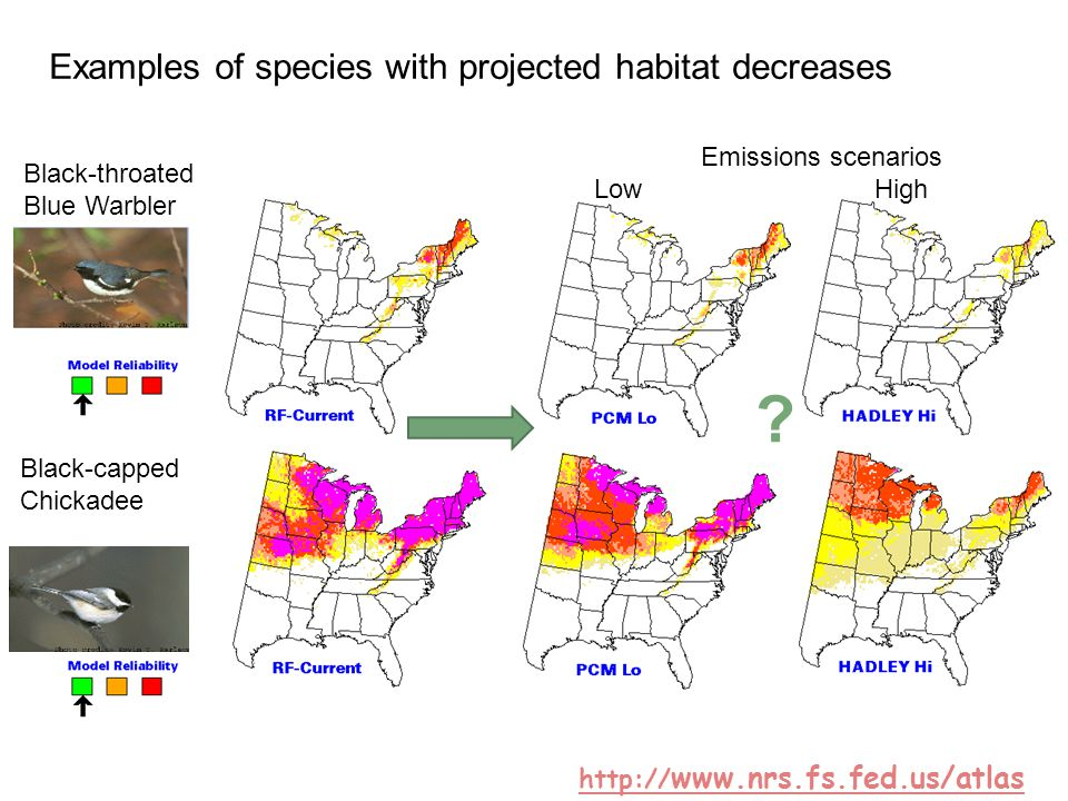 Black-throated Blue Warbler Black-capped Chickadee Emissions scenarios Low High ? Examples of species with projected habitat decreases http:// www.nrs