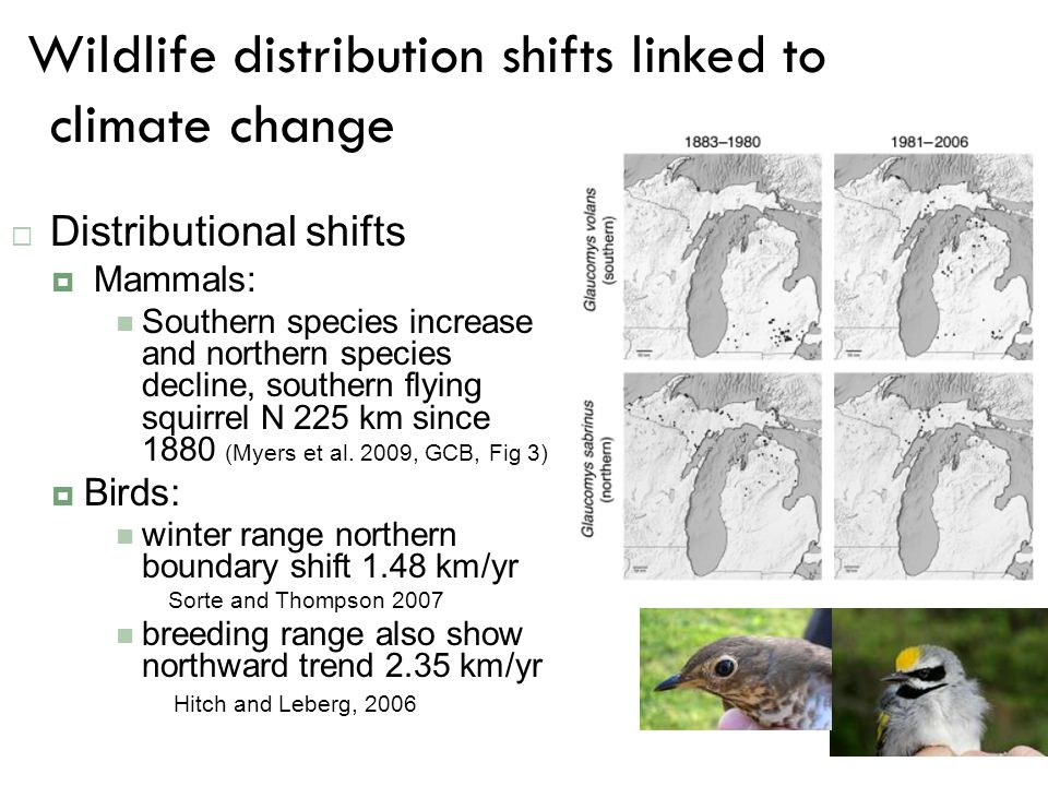 Wildlife distribution shifts linked to climate change  Distributional shifts  Mammals: Southern species increase and northern species decline, south