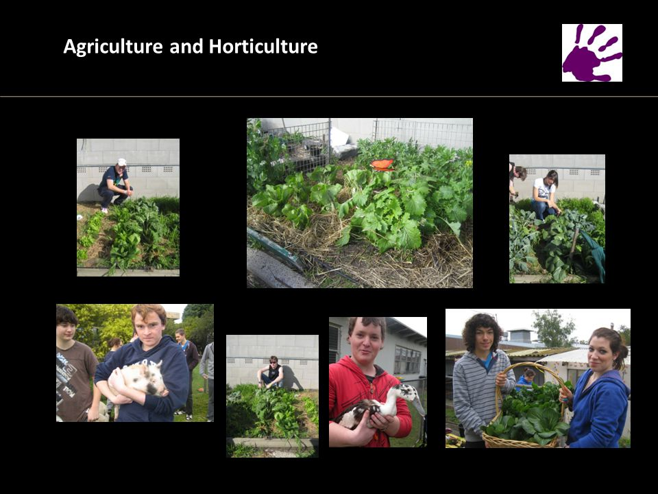 Agriculture and Horticulture