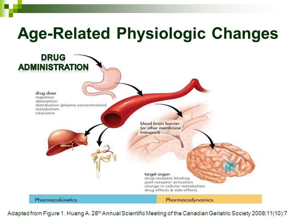Age-Related Physiologic Changes Adapted from Figure 1.