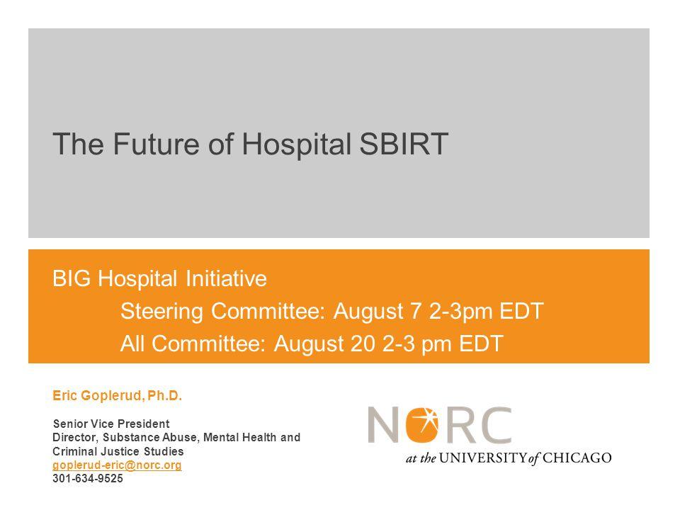 BIG Hospital Initiative Steering Committee: August 7 2-3pm EDT All Committee: August 20 2-3 pm EDT Eric Goplerud, Ph.D.