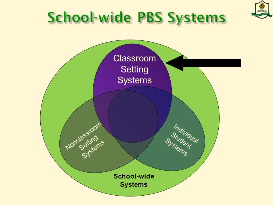 Nonclassroom Setting Systems Classroom Setting Systems Individual Student Systems School-wide Systems