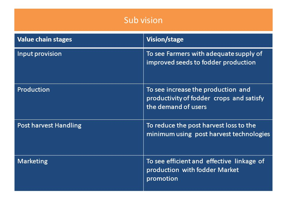 Sub vision Value chain stagesVision/stage Input provisionTo see Farmers with adequate supply of improved seeds to fodder production ProductionTo see increase the production and productivity of fodder crops and satisfy the demand of users Post harvest HandlingTo reduce the post harvest loss to the minimum using post harvest technologies MarketingTo see efficient and effective linkage of production with fodder Market promotion
