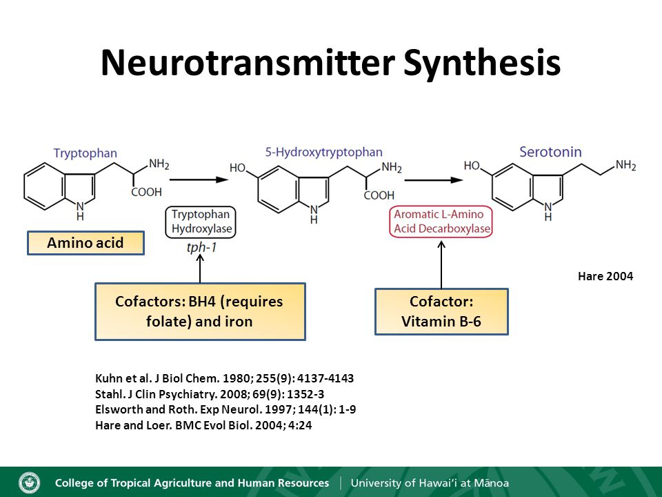 Neurotransmitter Synthesis Hare 2004 Amino acid Cofactor: Vitamin B-6 Kuhn et al.