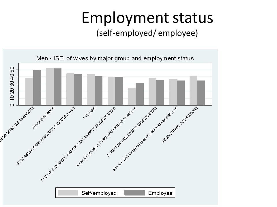 Employment status (self-employed/ employee)