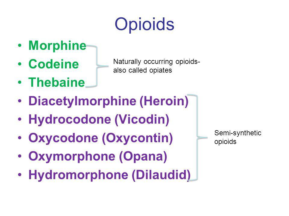 Opioids Morphine Codeine Thebaine Diacetylmorphine (Heroin) Hydrocodone (Vicodin) Oxycodone (Oxycontin) Oxymorphone (Opana) Hydromorphone (Dilaudid) N
