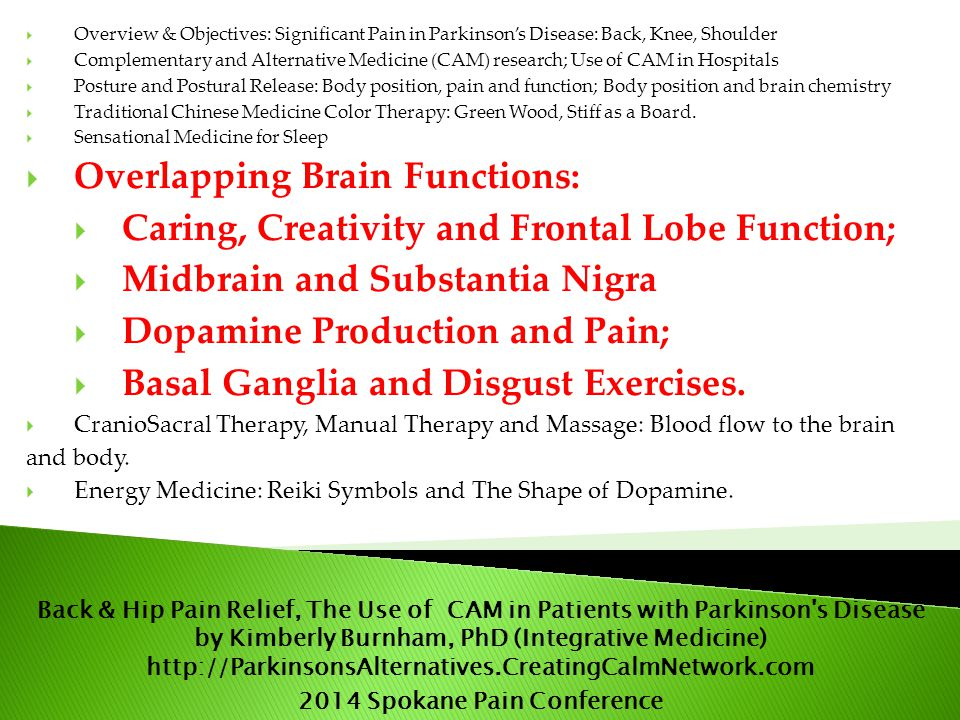  Overview & Objectives: Significant Pain in Parkinson's Disease: Back, Knee, Shoulder  Complementary and Alternative Medicine (CAM) research; Use of