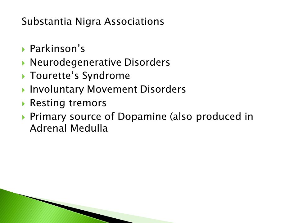 Substantia Nigra Associations  Parkinson's  Neurodegenerative Disorders  Tourette's Syndrome  Involuntary Movement Disorders  Resting tremors  Primary source of Dopamine (also produced in Adrenal Medulla