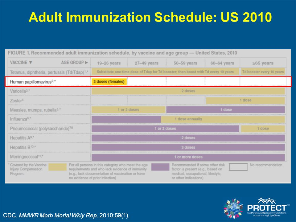 Adult Immunization Schedule: US 2010 CDC. MMWR Morb Mortal Wkly Rep. 2010;59(1).