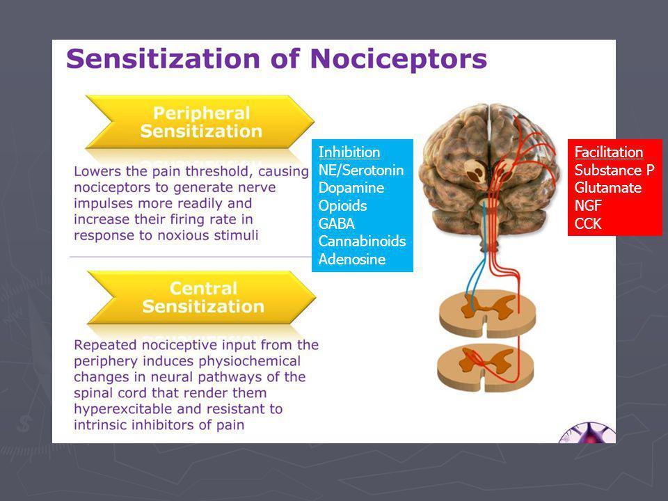 Facilitation Substance P Glutamate NGF CCK Inhibition NE/Serotonin Dopamine Opioids GABA Cannabinoids Adenosine