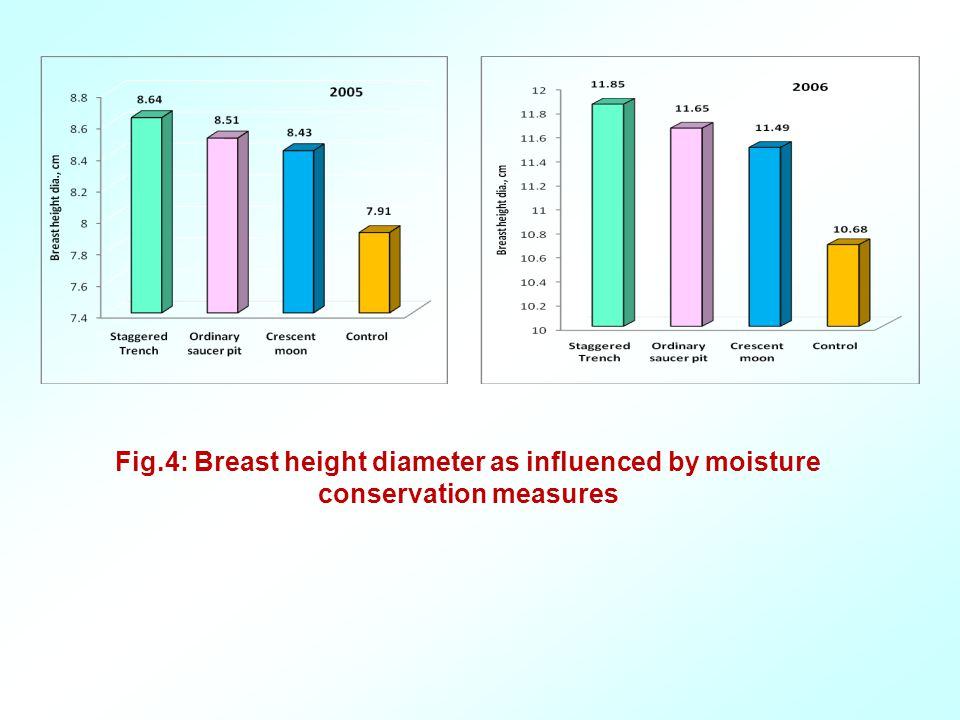 Fig.4: Breast height diameter as influenced by moisture conservation measures