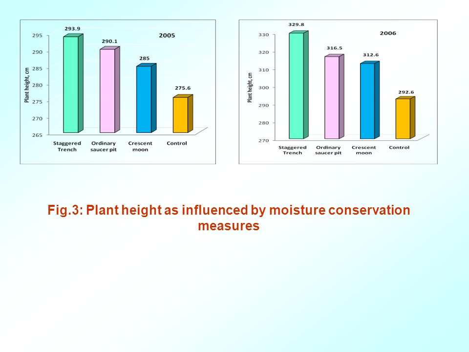 Fig.3: Plant height as influenced by moisture conservation measures