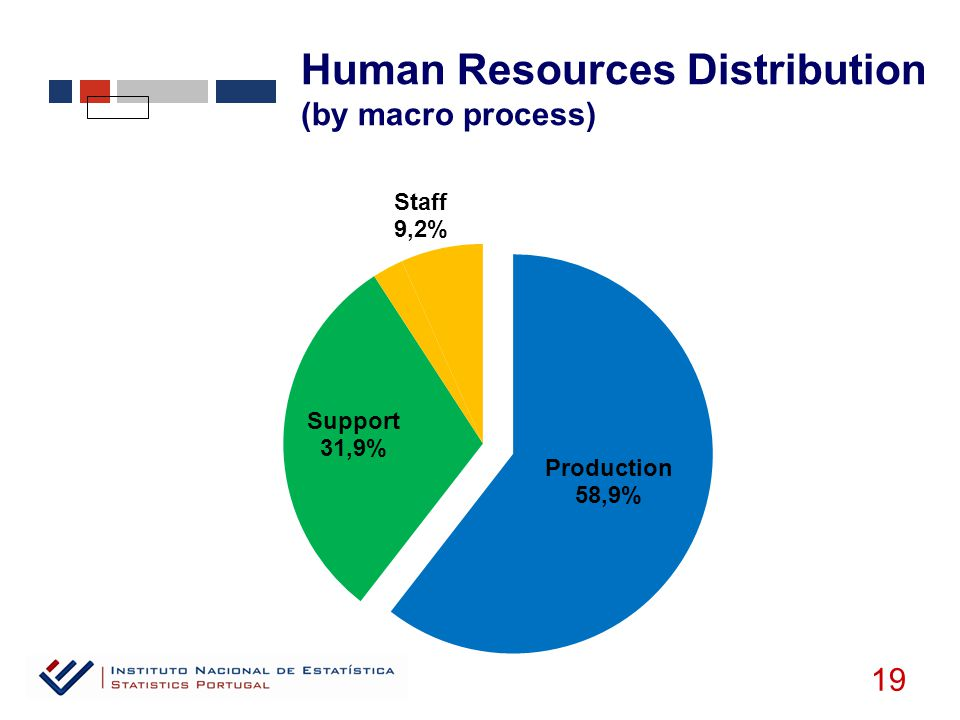 19 Human Resources Distribution (by macro process)