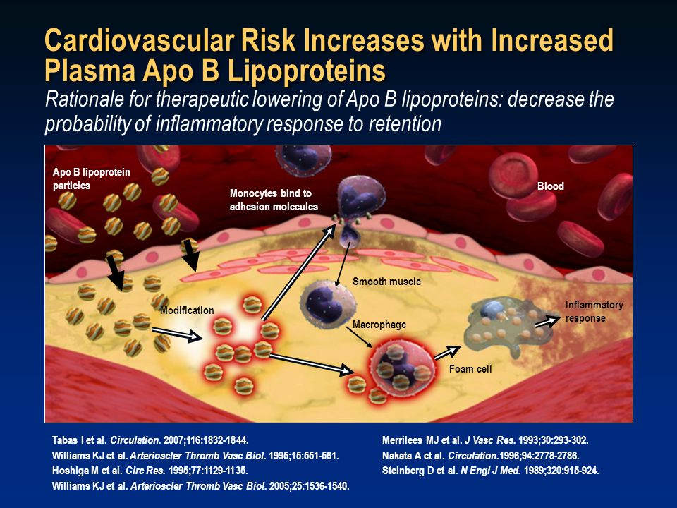 Rationale for therapeutic lowering of Apo B lipoproteins: decrease the probability of inflammatory response to retention Tabas I et al.