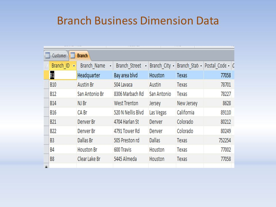 Branch Business Dimension Data