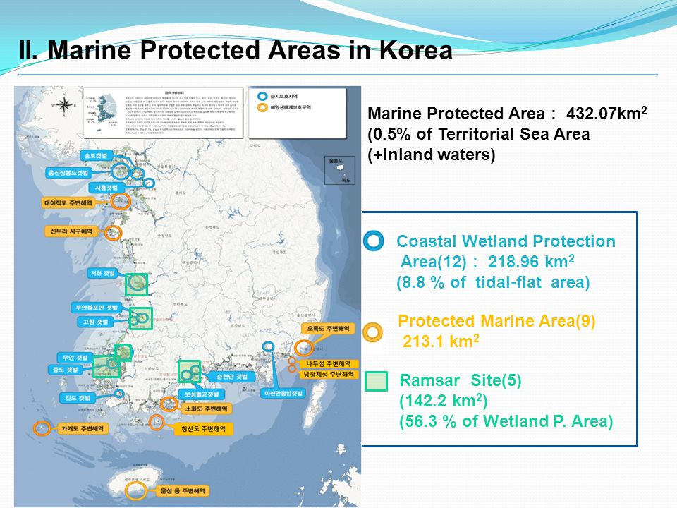 Coastal Wetland Protection Area(12) : 218.96 km 2 (8.8 % of tidal-flat area) Protected Marine Area(9) 213.1 km 2 Ramsar Site(5) (142.2 km 2 ) (56.3 % of Wetland P.