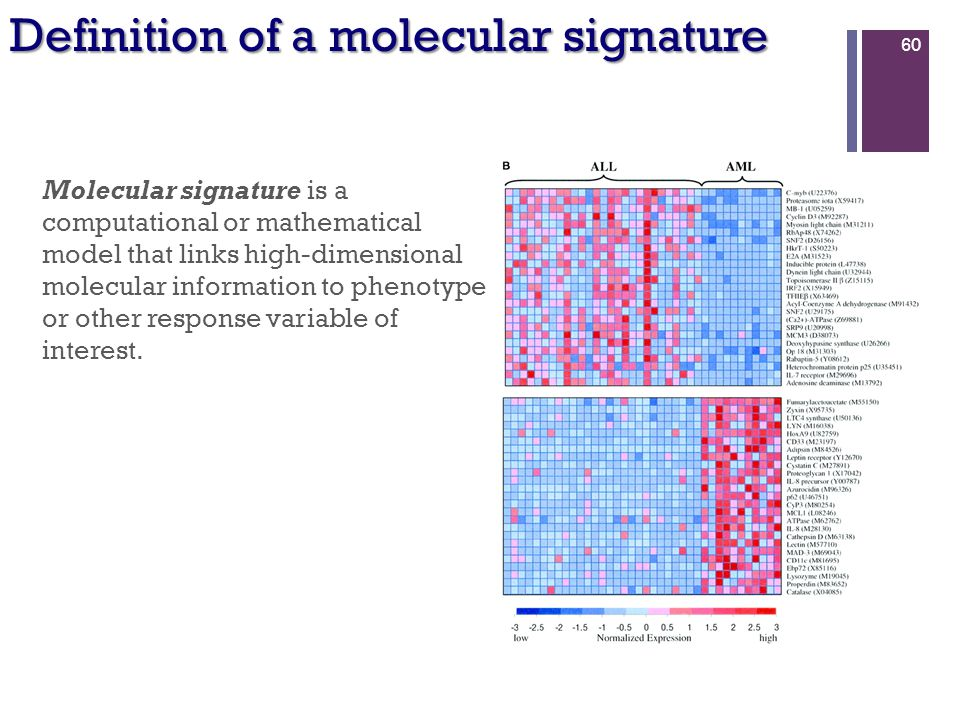 Molecular signature is a computational or mathematical model that links high-dimensional molecular information to phenotype or other response variable